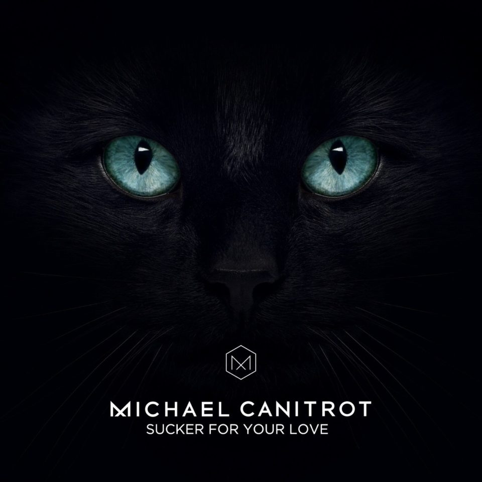 Micheal Canitrot Sucker For Your Love